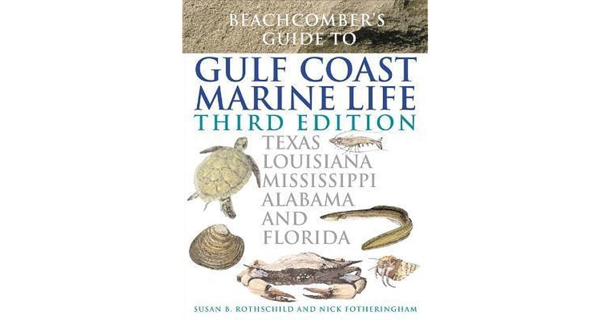 Beachcombers guide to gulf coast marine life texas louisiana beachcombers guide to gulf coast marine life texas louisiana mississippi alabama and florida by susan b rothschild fandeluxe Choice Image