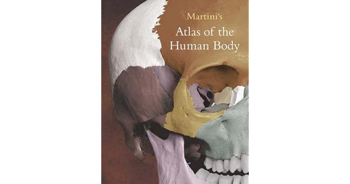 Martinis Atlas Of The Human Body By Frederic H Martini