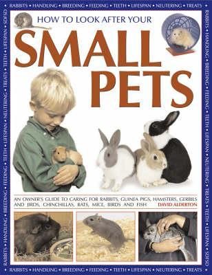How to Look After Your Small Pets: An Owner's Guide to Caring for Rabbits, Guinea Pigs, Hamsters, Gerbils and Jirds, Chinchillas, Rats, Mice and Other Rodents