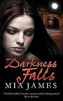 Darkness Falls (Ravenwood, #2)