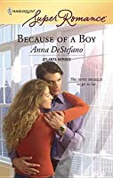 Because of a Boy [Harlequin Super Romance Series #1449]