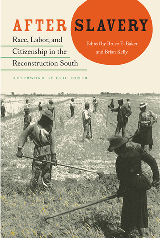 After Slavery  Race, Labor, and Citizenship in the Reconstruction South (New Perspectives on the History of the South)