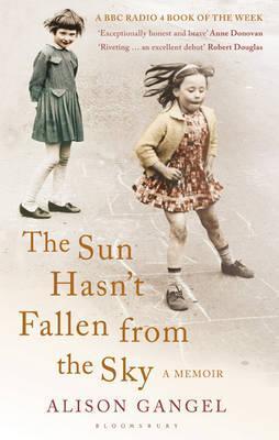 The Sun Hasn't Fallen from the Sky: A Memoir
