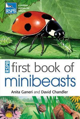 Anita Ganeri - First book of minibeasts