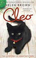 Cleo: How a Small Black Cat Helped Heal a Family