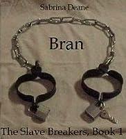 Bran (The Slave Breakers, #1)