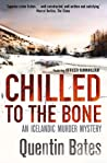 Chilled to the Bone (Officer Gunnhilder #3)