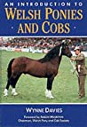An Introduction to Welsh Ponies & Cob
