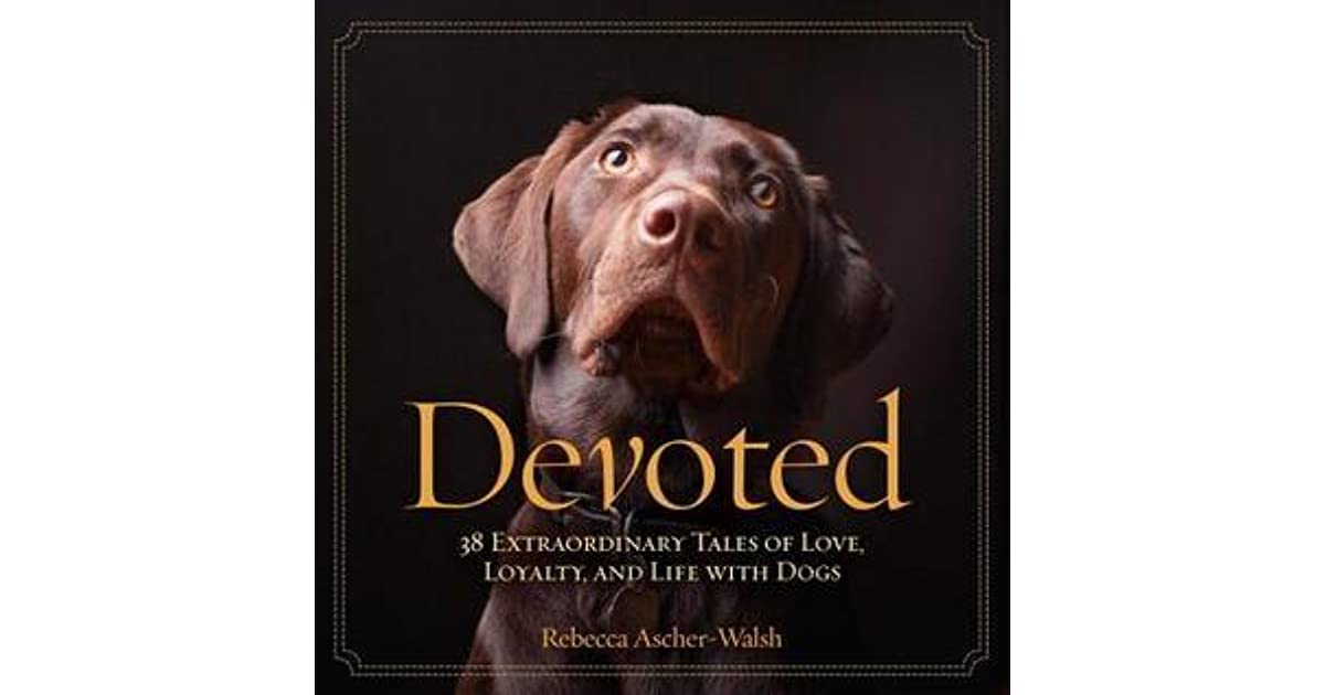 Devoted Extraordinary Tales Of Love Loyalty And Life With - 28 powerful photos of service dogs that show just how loyal they are