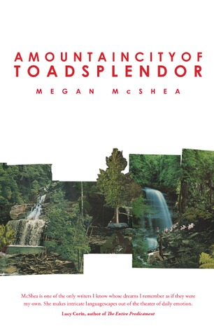 A Mountain City of Toad Splendor by Megan McShea