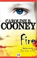 Fire (Losing Christina, #3)