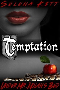 Temptation by Selena Kitt