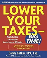 lower your taxes big time 20092010 edition lower your taxes big time