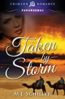 Taken by Storm (Romantic Realms Collection, #1)