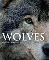 Wolves: Capturing the Natural Spirit of These Incredible Animals