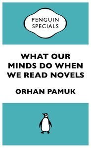 What Our Minds Do When We Read Novels