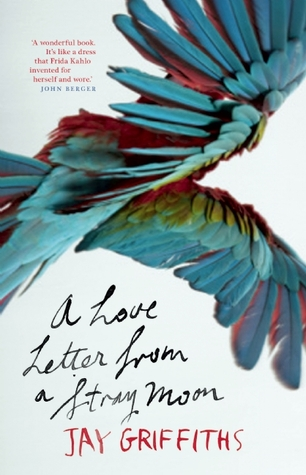 A Love Letter from a Stray Moon