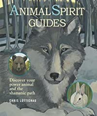 Animal Spirit Guides: How to discover your power animal and the shamanic path