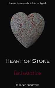 Incineration (Heart of Stone, #1; NSC Industries, #2)