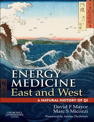 E-Book Energy Medicine East and West: A Natural History of Qi