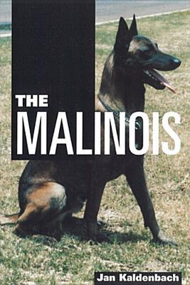 The Malinois