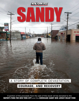 Sandy: A Story of Complete Devastation, Courage, and Recovery