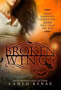 Broken Wings (Hidden Wings, #2)
