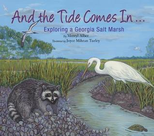 And the Tide Comes In...: Exploring a Georgia Salt Marsh