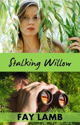 Stalking Willow (Amazing Grace, #1)