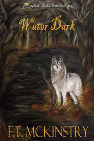 Water Dark by F.T. McKinstry