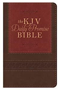 The KJV Daily Promise Bible: The Entire Bible Arranged in 365 Daily Readings--Featuring One of God's Promises for Every Day of the Year