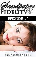 Sandpaper Fidelity (Sandpaper Fidelity, #1)