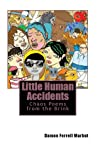 Little Human Accidents: Chaos Poems from the Brink