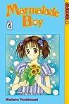 Marmalade Boy, Vol. 6 (Marmalade Boy, #6)