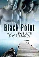 Black Point (Black Point, #1)