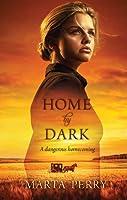 Home by Dark (Watcher in the Dark)