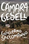 Cámara Gesell ebook review