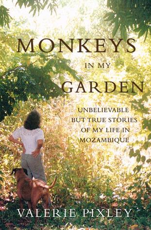 Monkeys in My Garden