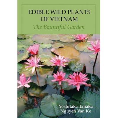 Edible Wild Plants Of Vietnam The Bountiful Garden By Yoshitaka Tanaka