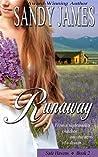 Runaway (Safe Havens, #2)