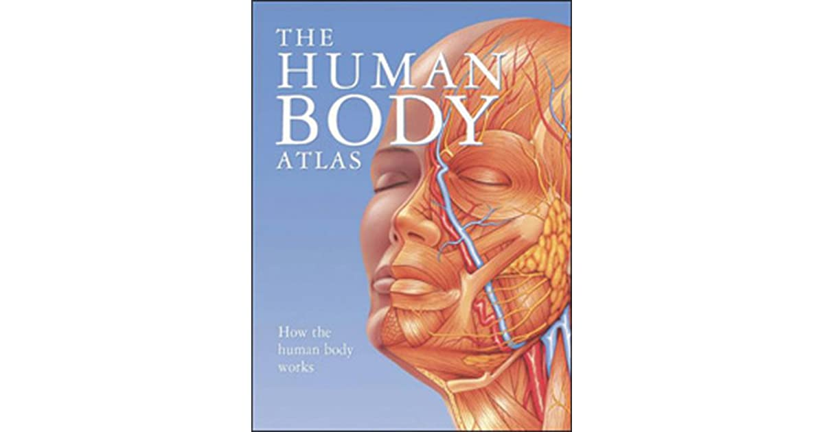 The Human Body Atlas How The Human Body Works By Global Book Publishing