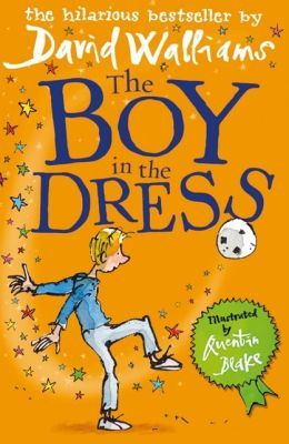 The Boy in the Dress image cover