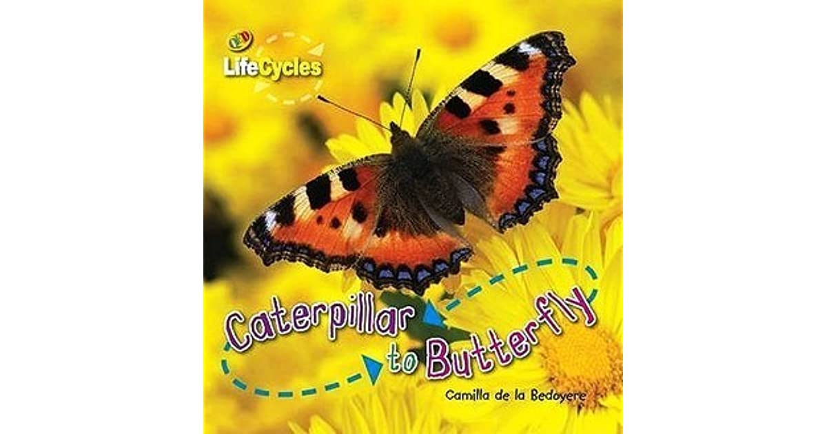 Caterpillar to Butterfly by Camilla De la Bédoyère