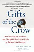 Gift of the Crow: How Perception, Emotion, and Thought Allow Smart Birds to Behave Like Humans