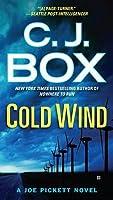 Cold Wind (Joe Pickett, #11)