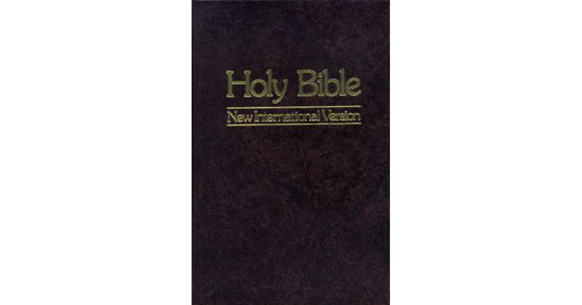 Holy Bible: New International Version by God