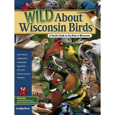 Image result for Youth's Guide to Birdwatching