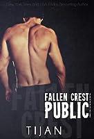 Fallen Crest Public (Fallen Crest High, #3)