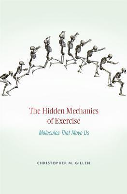 the hidden mechanics of exercise