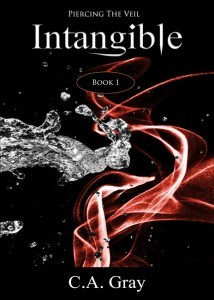 Intangible (Piercing the Veil, #1)